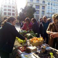 27-01-2019 Mercado agrario 'De la huerta a la plaza'