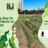 Jornada 'A training day in urban gardens in gender key'