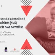 Taller 'De la deconstrucció a la conciliació: les Noves Masculinitats (NMS) a les llars durant la nova normalitat'