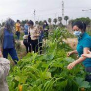 05-06-2021 Taller Ecofeminismo: conectamos con nuestras raíces