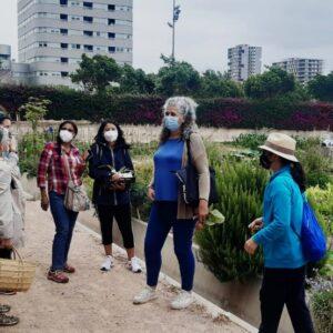 taller-ecofeminismo (5)